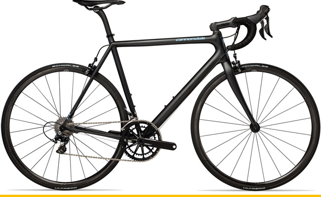 The Best Road Bikes for Every Rider 最佳公路自行车选购